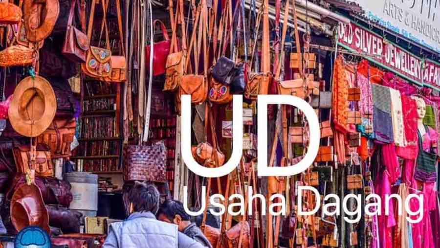 UD (Usaha Dagang)